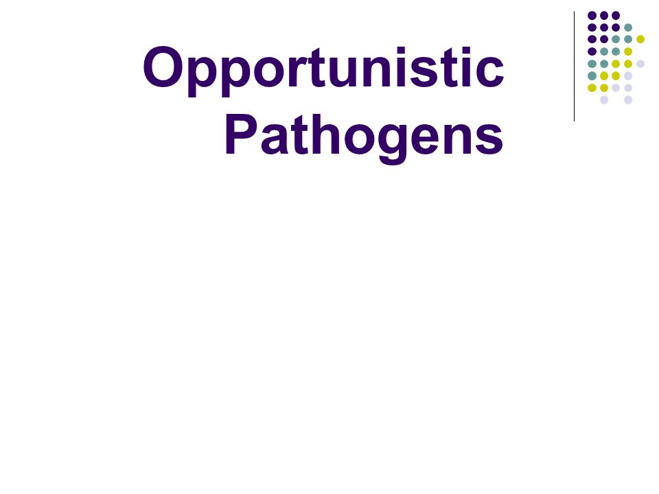 Opportunistic Pathogens