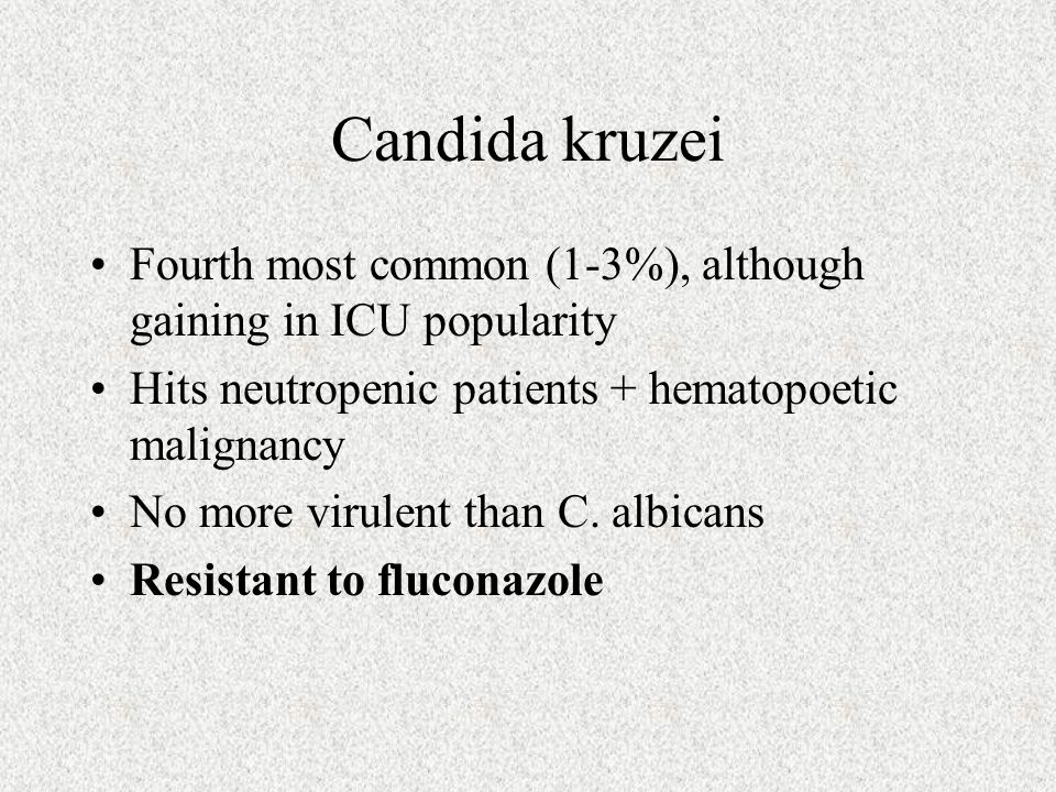 Candida kruzei Fourth most common (1-3%), although gaining in ICU popularity Hits neutropenic patients + hematopoetic malignancy No more virulent than
