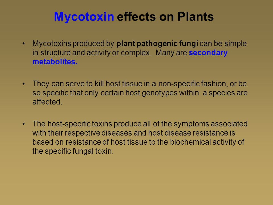 Mycotoxin effects on Plants Mycotoxins produced by plant pathogenic fungi can be simple in structure and activity or complex.