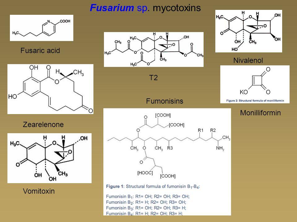 Fusaric acid T2 Zearelenone Nivalenol Fusarium sp. mycotoxins Vomitoxin Monilliformin Fumonisins