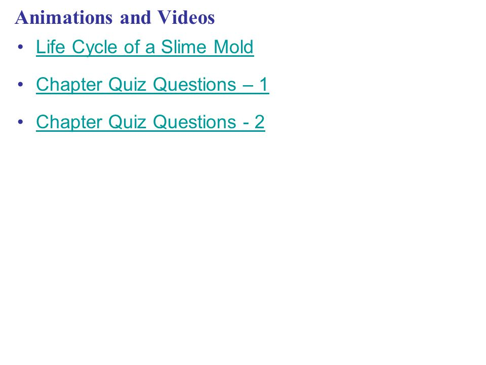 Animations and Videos Life Cycle of a Slime Mold Chapter Quiz Questions – 1 Chapter Quiz Questions - 2