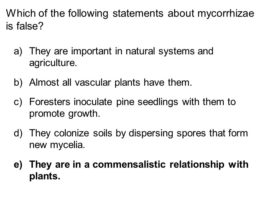 Which of the following statements about mycorrhizae is false? a)They are important in natural systems and agriculture. b)Almost all vascular plants ha