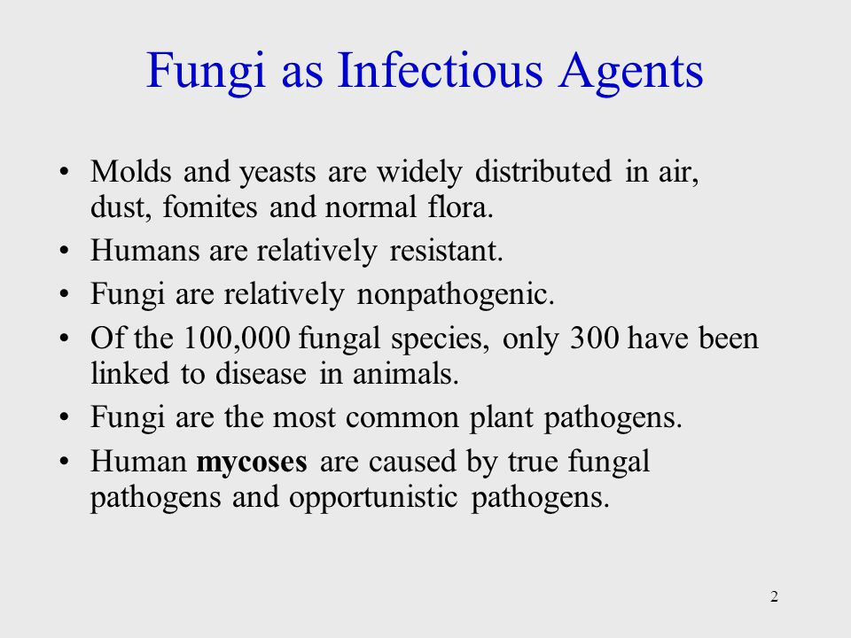 2 Fungi as Infectious Agents Molds and yeasts are widely distributed in air, dust, fomites and normal flora.