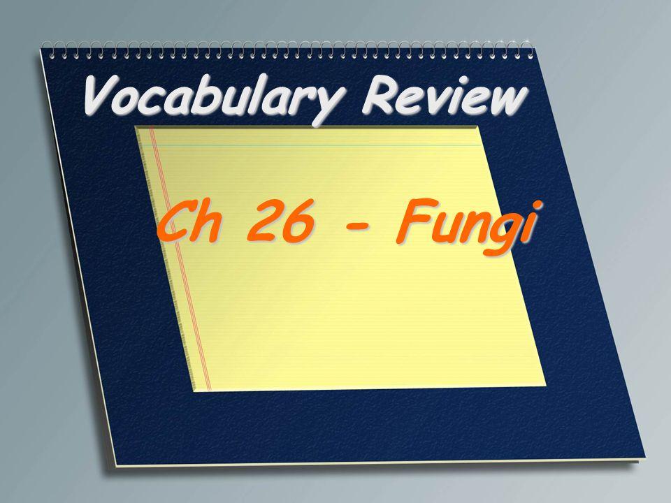 Vocabulary Review Ch 26 - Fungi