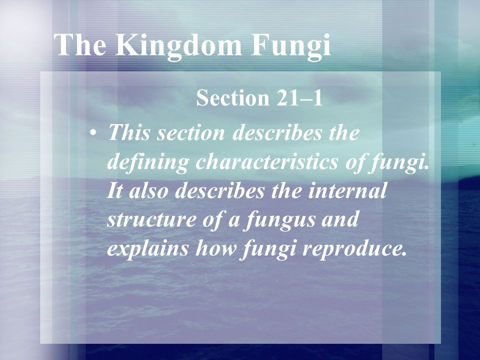 Structure and Function of Fungi What is a fruiting body of a fungus.