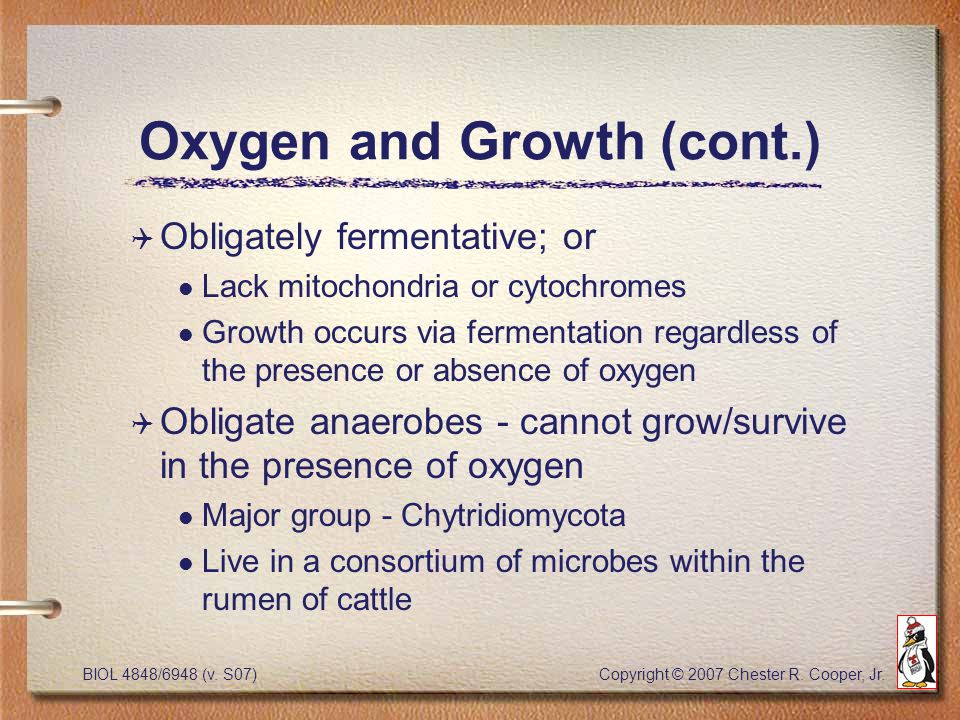 BIOL 4848/6948 (v. S07) Copyright © 2007 Chester R. Cooper, Jr. Oxygen and Growth (cont.) Q Obligately fermentative; or l Lack mitochondria or cytochr