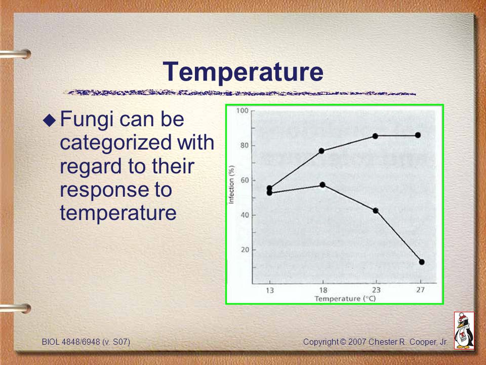 BIOL 4848/6948 (v. S07) Copyright © 2007 Chester R. Cooper, Jr. Temperature u Fungi can be categorized with regard to their response to temperature