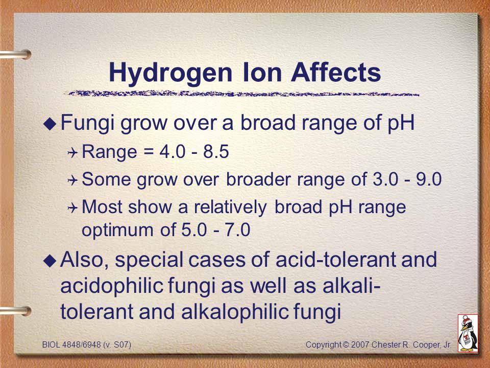 BIOL 4848/6948 (v. S07) Copyright © 2007 Chester R. Cooper, Jr. Hydrogen Ion Affects u Fungi grow over a broad range of pH Q Range = 4.0 - 8.5 Q Some