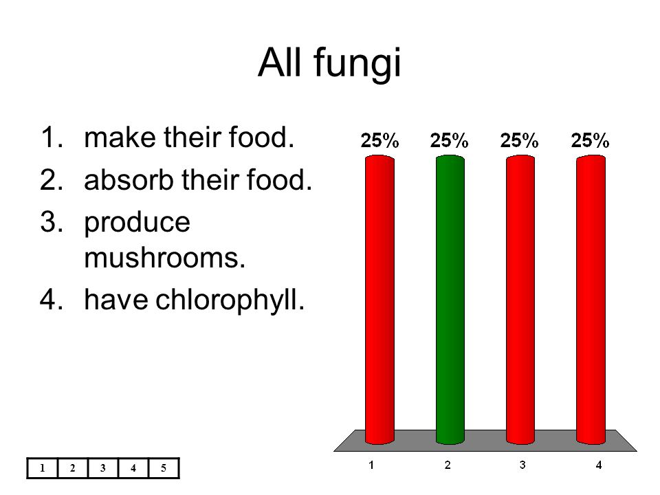 12345 All fungi 1.make their food. 2.absorb their food. 3.produce mushrooms. 4.have chlorophyll.