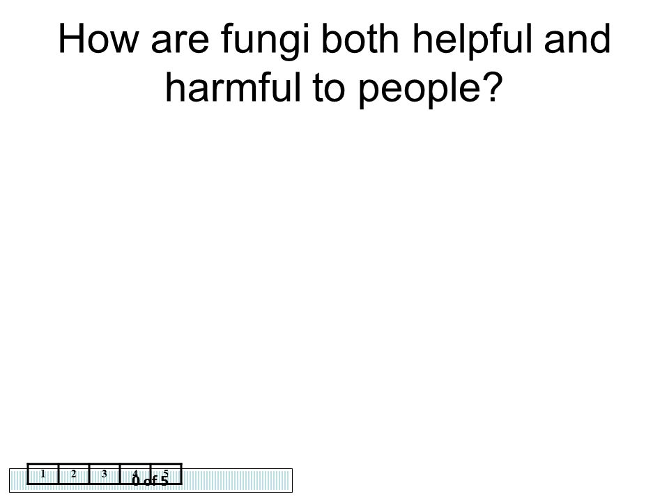 0 of 5 12345 How are fungi both helpful and harmful to people?