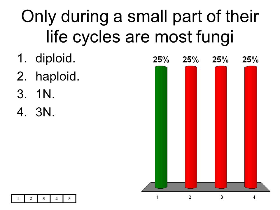 12345 Only during a small part of their life cycles are most fungi 1.diploid. 2.haploid. 3.1N. 4.3N.