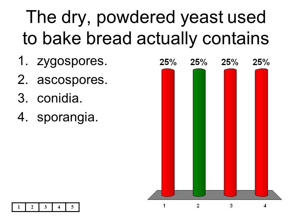 12345 The dry, powdered yeast used to bake bread actually contains 1.zygospores. 2.ascospores. 3.conidia. 4.sporangia.