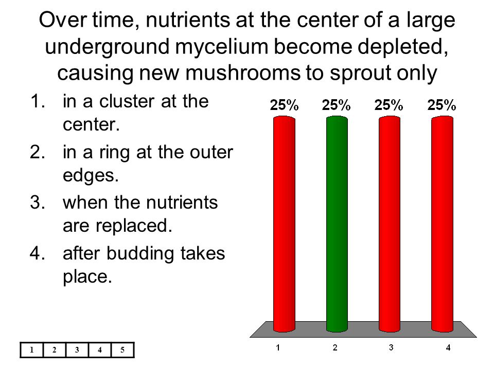 12345 Over time, nutrients at the center of a large underground mycelium become depleted, causing new mushrooms to sprout only 1.in a cluster at the c