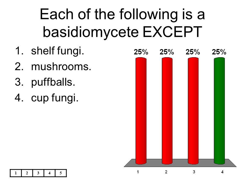 12345 Each of the following is a basidiomycete EXCEPT 1.shelf fungi. 2.mushrooms. 3.puffballs. 4.cup fungi.