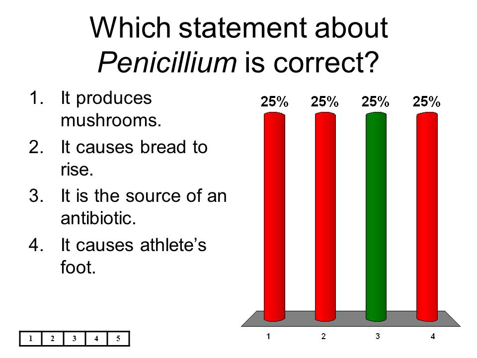 12345 Which statement about Penicillium is correct? 1.It produces mushrooms. 2.It causes bread to rise. 3.It is the source of an antibiotic. 4.It caus