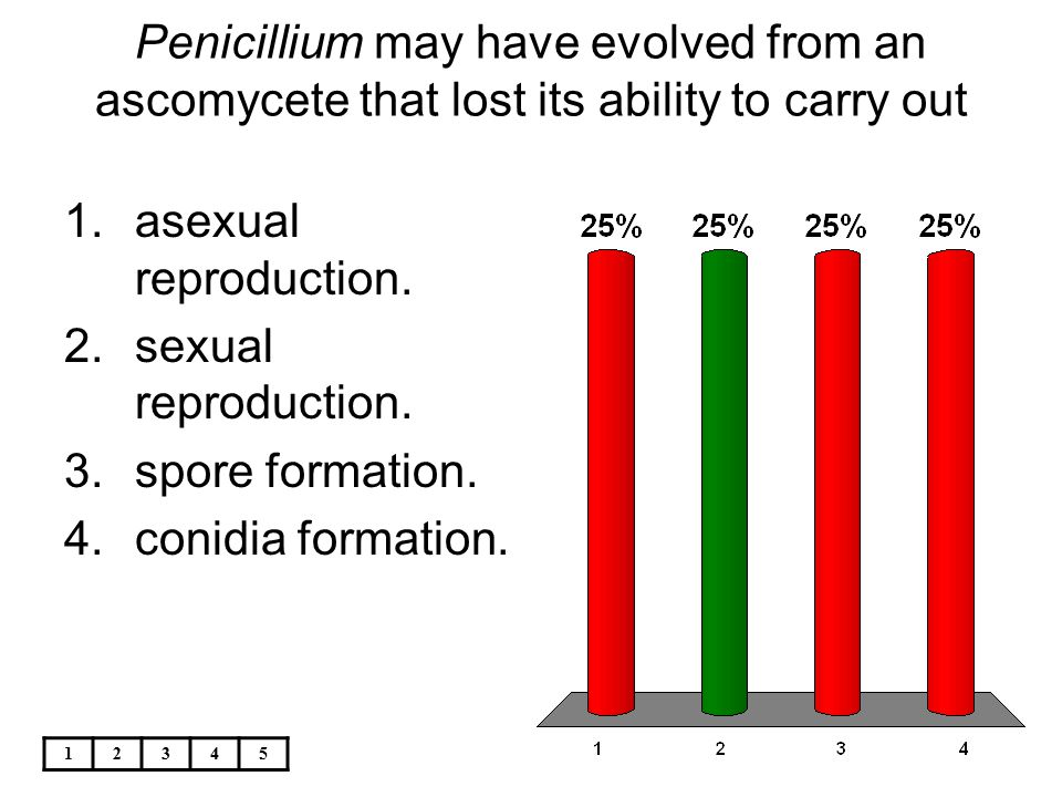 12345 Penicillium may have evolved from an ascomycete that lost its ability to carry out 1.asexual reproduction. 2.sexual reproduction. 3.spore format