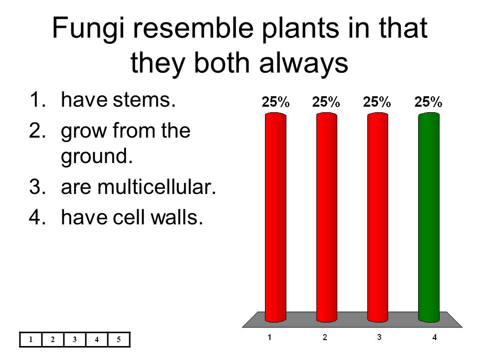 12345 Fungi resemble plants in that they both always 1.have stems. 2.grow from the ground. 3.are multicellular. 4.have cell walls.