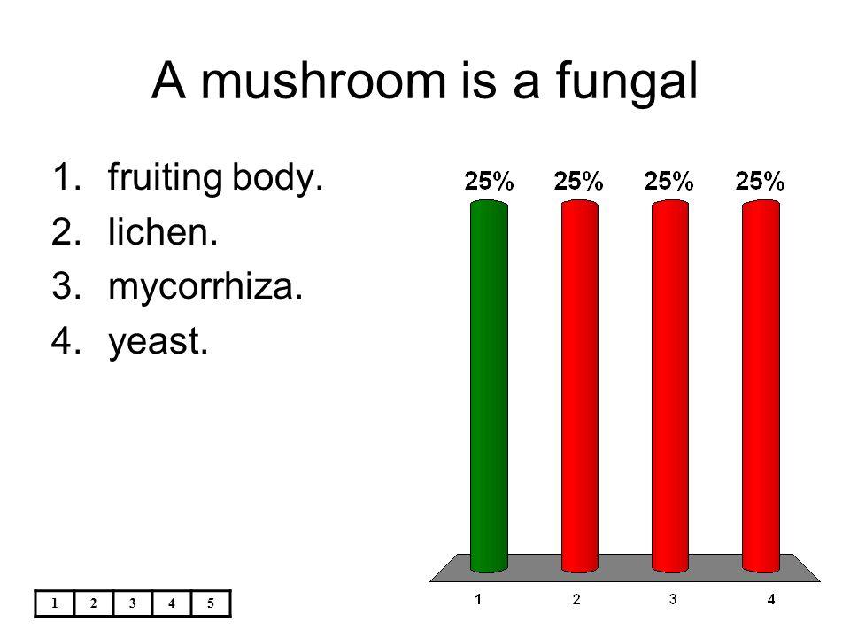 12345 A mushroom is a fungal 1.fruiting body. 2.lichen. 3.mycorrhiza. 4.yeast.