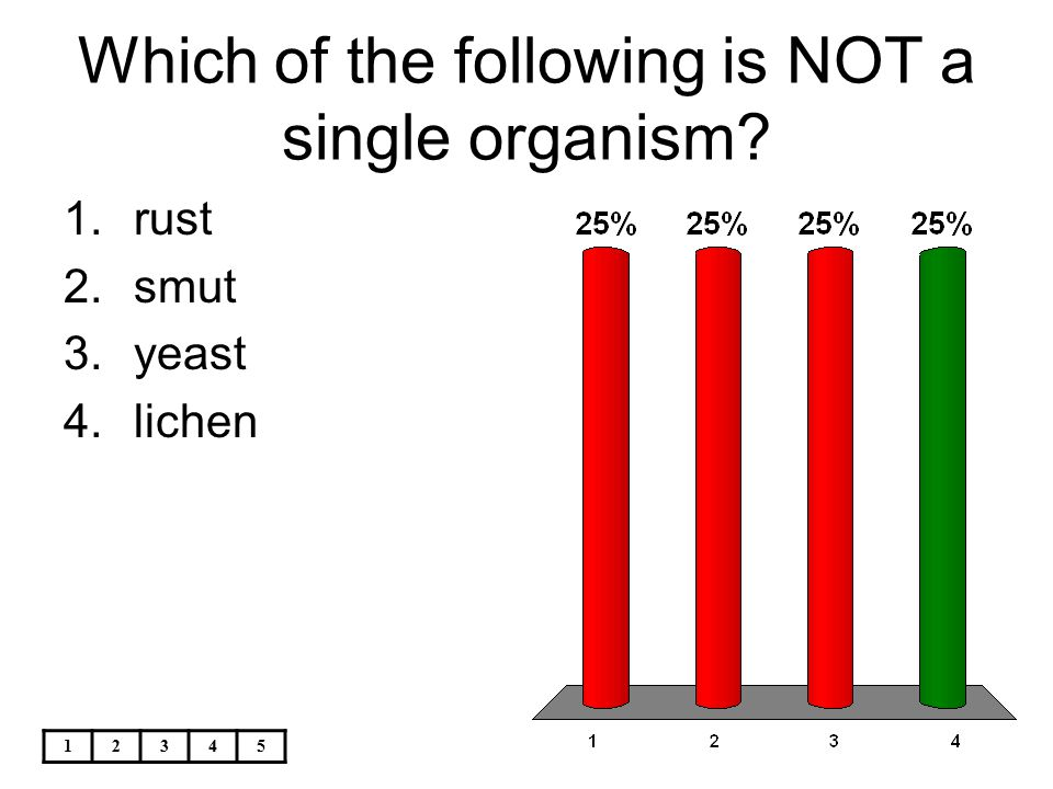 12345 Which of the following is NOT a single organism? 1.rust 2.smut 3.yeast 4.lichen