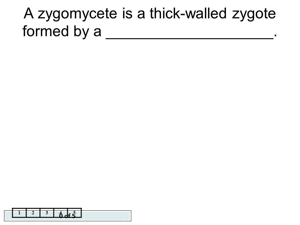 0 of 5 12345 A zygomycete is a thick-walled zygote formed by a ____________________.