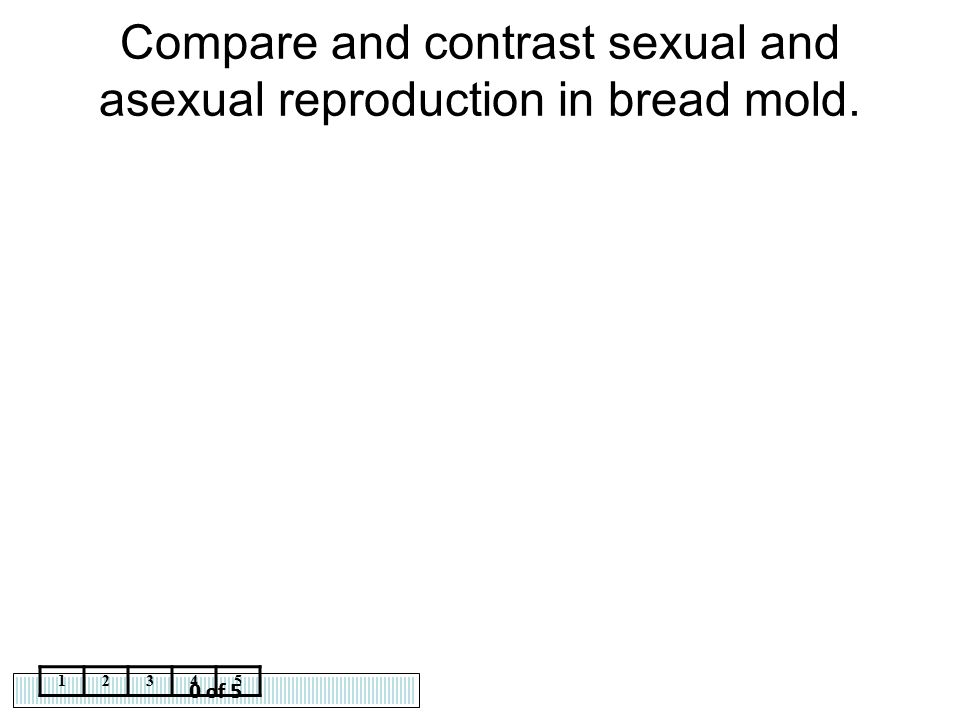 0 of 5 12345 Compare and contrast sexual and asexual reproduction in bread mold.