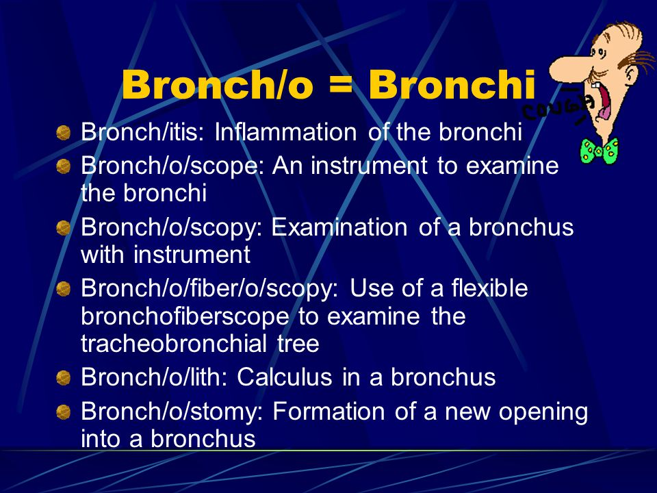 Bronch/o = Bronchi Bronch/itis: Inflammation of the bronchi Bronch/o/scope: An instrument to examine the bronchi Bronch/o/scopy: Examination of a bronchus with instrument Bronch/o/fiber/o/scopy: Use of a flexible bronchofiberscope to examine the tracheobronchial tree Bronch/o/lith: Calculus in a bronchus Bronch/o/stomy: Formation of a new opening into a bronchus