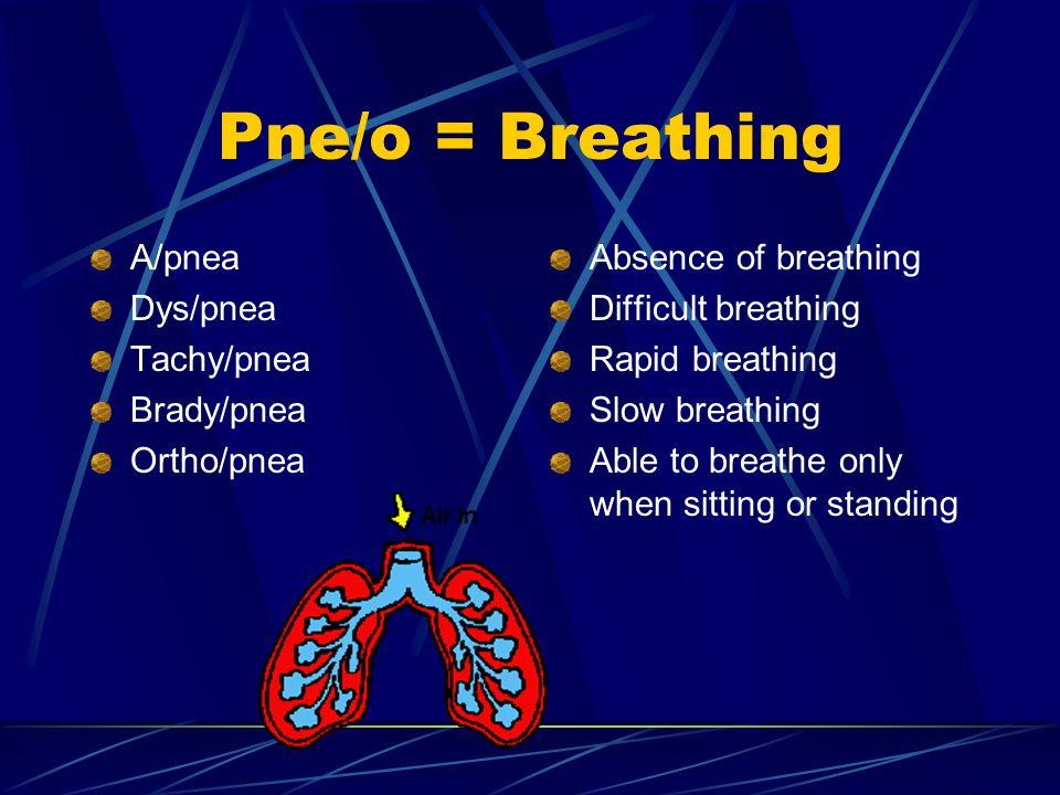 Pne/o = Breathing A/pnea Dys/pnea Tachy/pnea Brady/pnea Ortho/pnea Absence of breathing Difficult breathing Rapid breathing Slow breathing Able to breathe only when sitting or standing