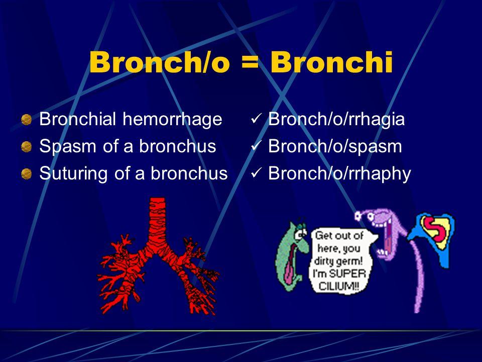 Bronch/o = Bronchi Bronchial hemorrhage Spasm of a bronchus Suturing of a bronchus Bronch/o/rrhagia Bronch/o/spasm Bronch/o/rrhaphy