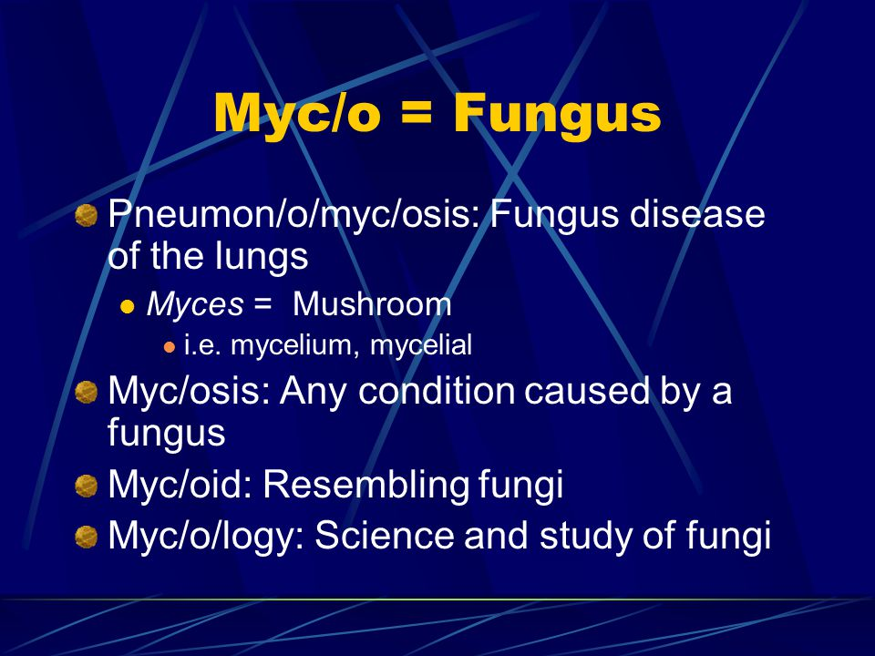 Myc/o = Fungus Pharyng/o/myc/osis: Fungal disease (condition) of the pharynx (throat) Rhin/o/myc/osis: Fungal disease (condition) of the nose Dermat/o/myc/osis: fungal disease of the skin Myc/o/dermat/itis: Inflammation of the skin caused by a fungus