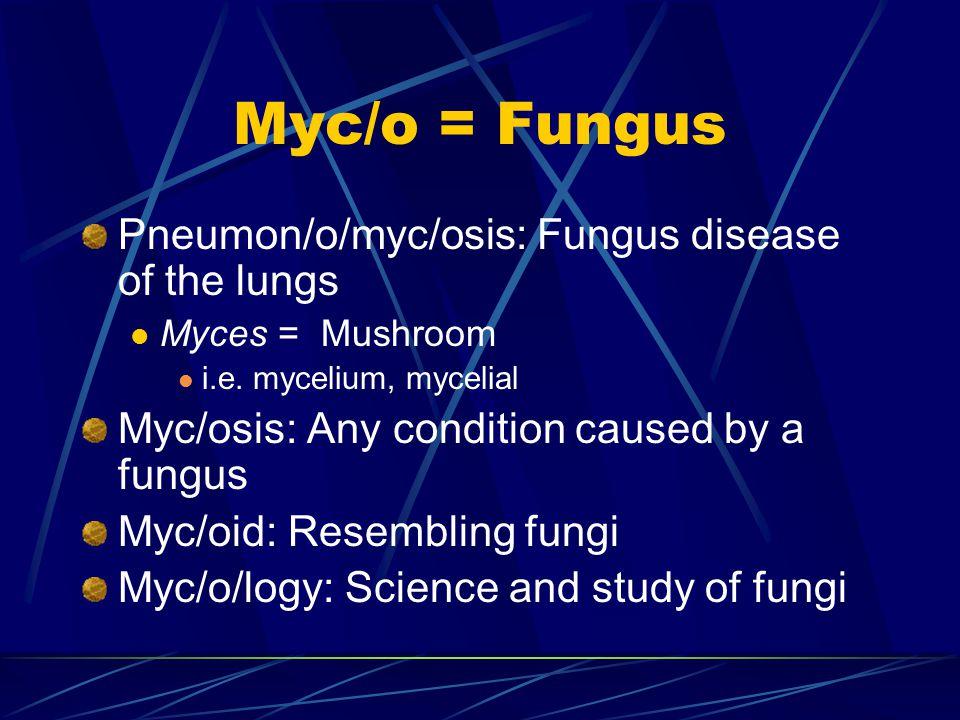 Myc/o = Fungus Pneumon/o/myc/osis: Fungus disease of the lungs Myces = Mushroom i.e.