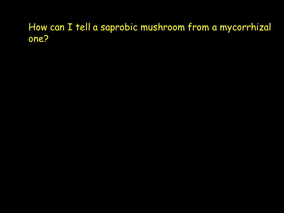 How can I tell a saprobic mushroom from a mycorrhizal one?