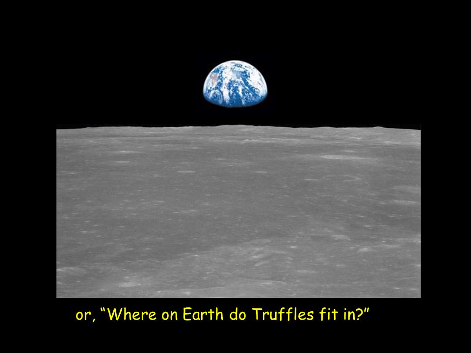 "or, ""Where on Earth do Truffles fit in?"""