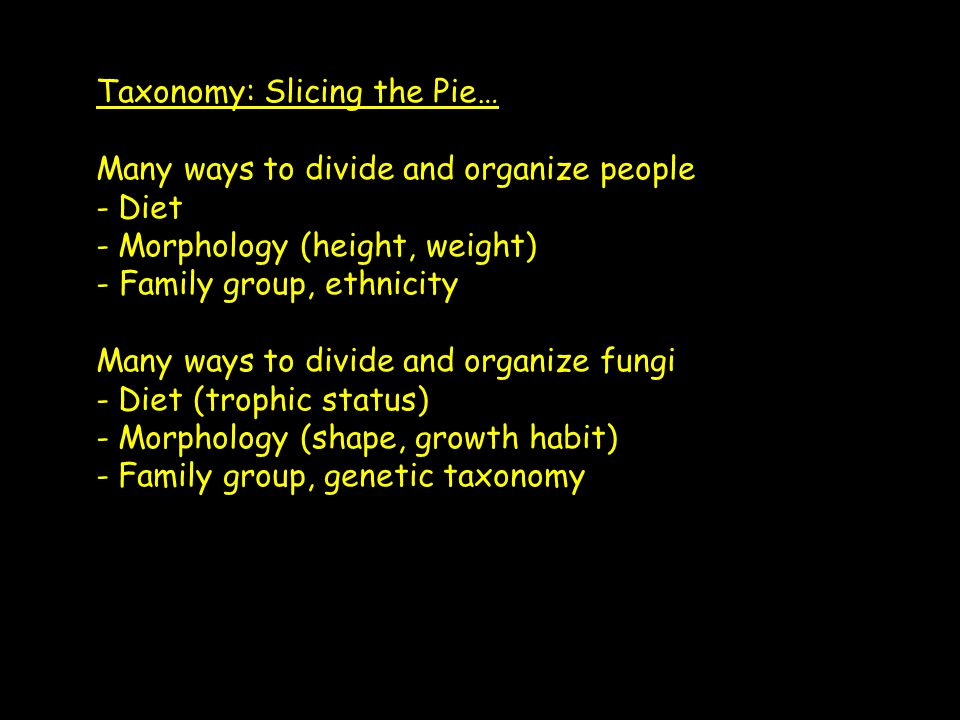 Taxonomy: Slicing the Pie… Many ways to divide and organize people - Diet - Morphology (height, weight) - Family group, ethnicity Many ways to divide