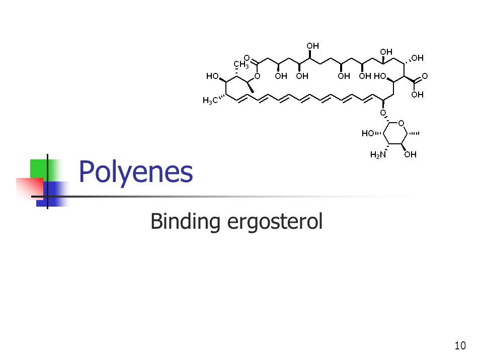 10 Polyenes Binding ergosterol