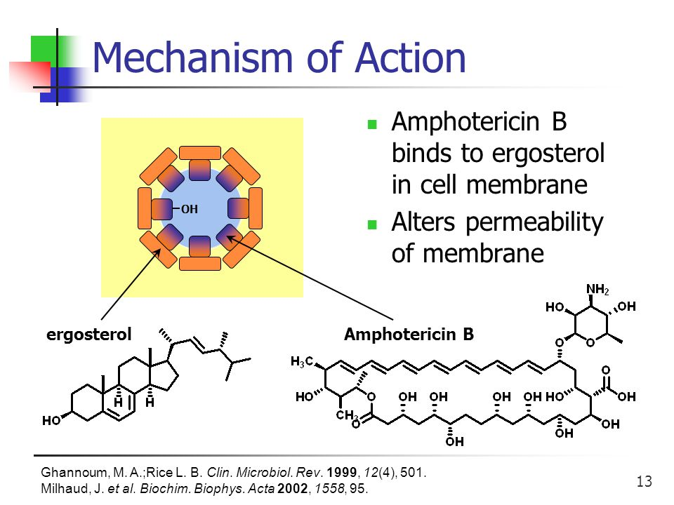 13 OH Mechanism of Action Amphotericin B binds to ergosterol in cell membrane Alters permeability of membrane Ghannoum, M.