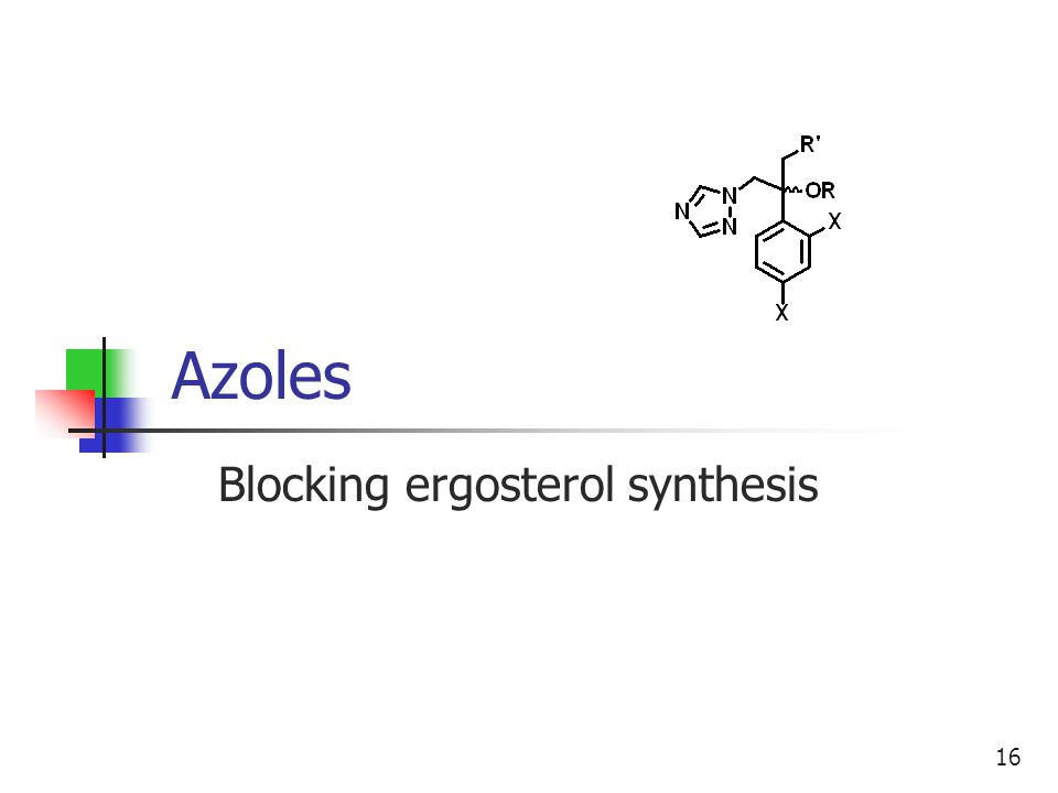 16 Azoles Blocking ergosterol synthesis