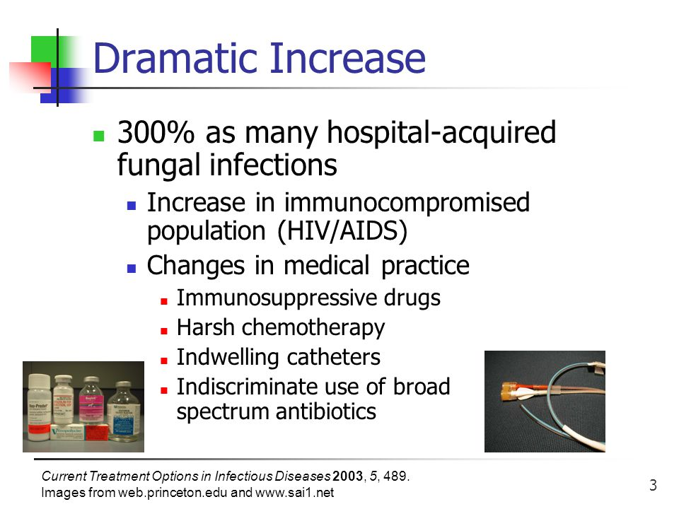 4 Types of Fungal Infections Candidiasis – Candida albicans Impaired immunity, receiving broad-spectrum antibiotic treatment 80% of hospital-acquired infections Mortality rate ~ 40% Aspergillosis – Aspergillus spp.