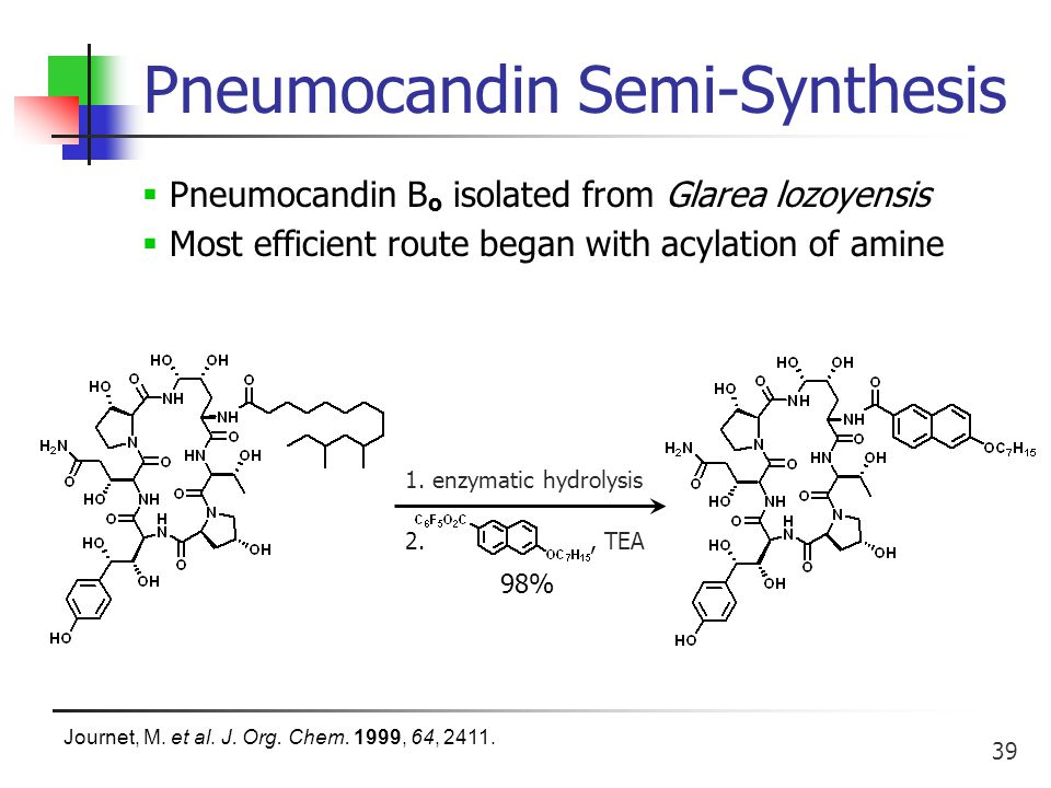 39 Pneumocandin Semi-Synthesis 2., TEA 1.