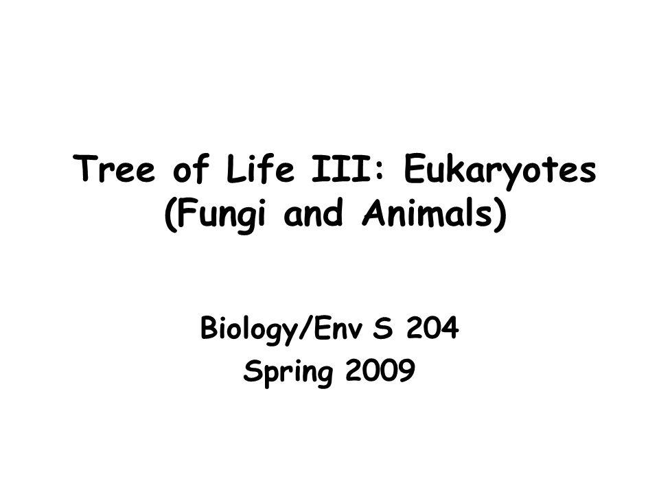 TOL: Arthropods Platnick (1992): Speaking of biodiversity is essentially equivalent to speaking about arthropods.
