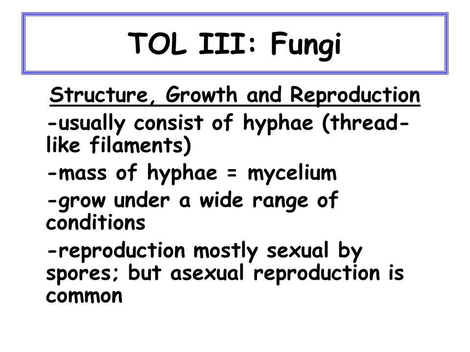 TOL: Summary 6) cont'd.