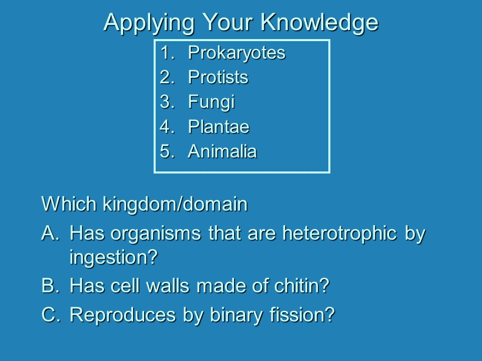 Applying Your Knowledge Which kingdom/domain A.Has organisms that are heterotrophic by ingestion.