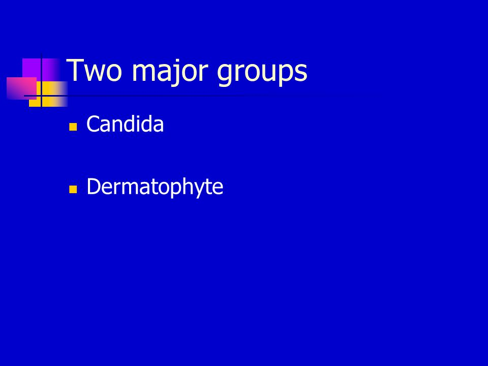 Two major groups Candida Dermatophyte