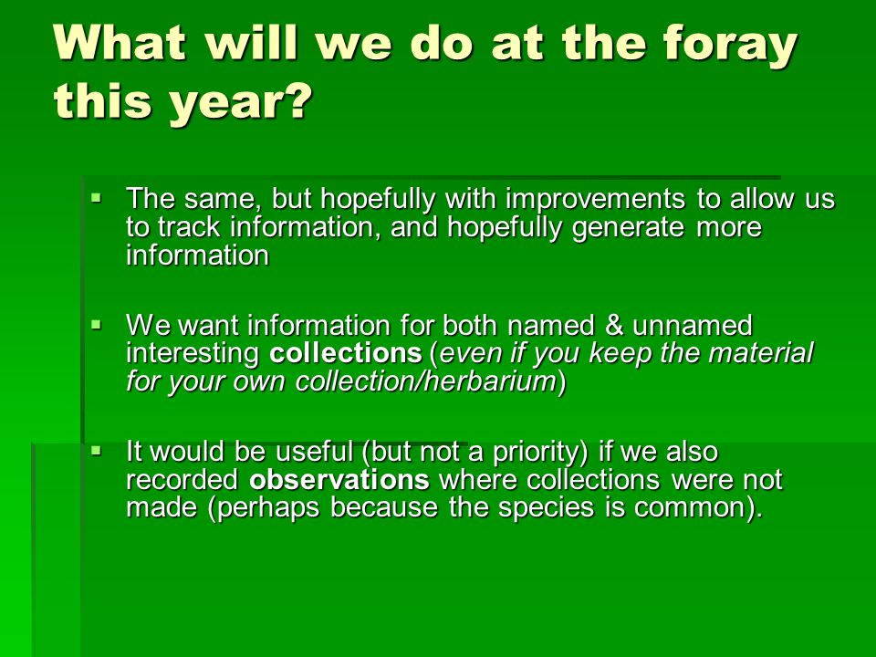 What will we do at the foray this year.