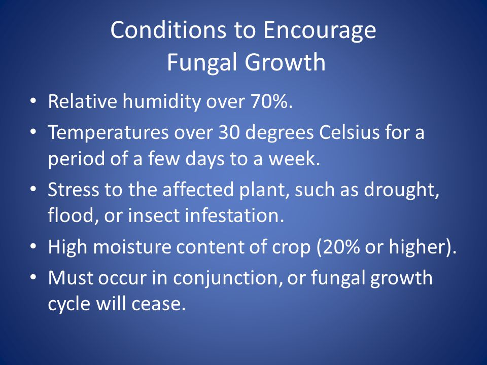 Conditions to Encourage Fungal Growth Relative humidity over 70%. Temperatures over 30 degrees Celsius for a period of a few days to a week. Stress to