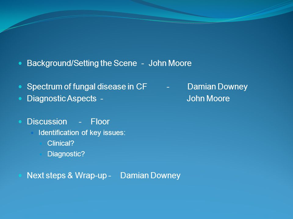 Background/Setting the Scene - John Moore Spectrum of fungal disease in CF - Damian Downey Diagnostic Aspects - John Moore Discussion - Floor Identification of key issues: Clinical.