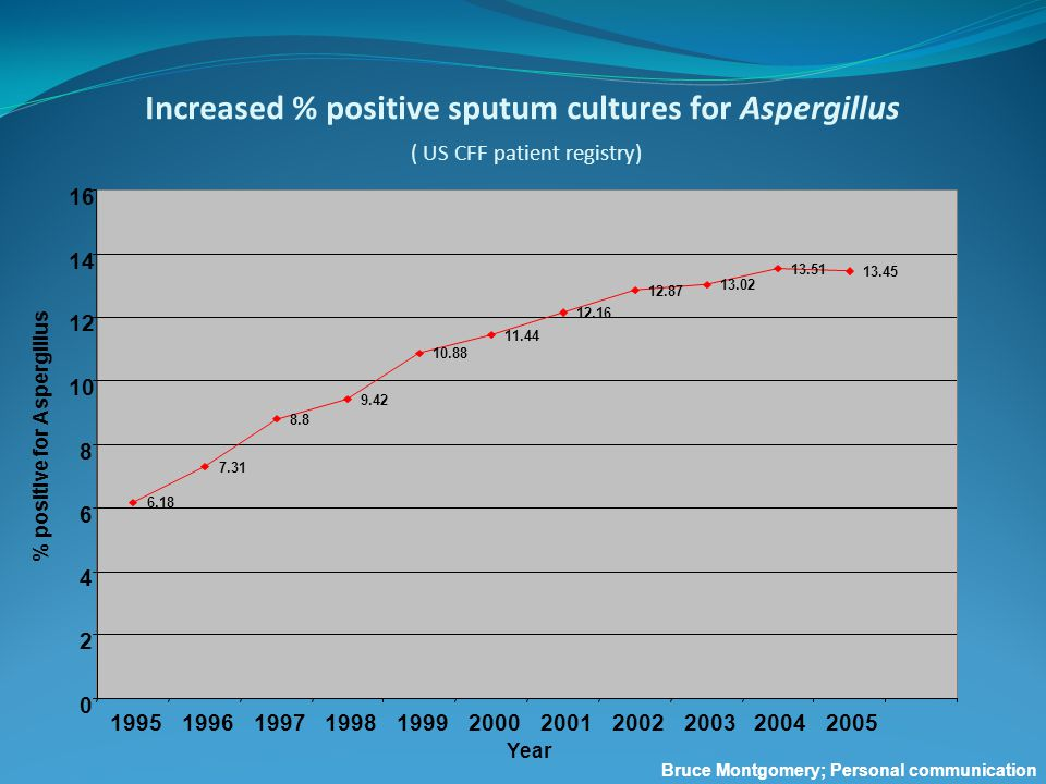 Increased % positive sputum cultures for Aspergillus ( US CFF patient registry) 6.18 7.31 8.8 9.42 10.88 11.44 12.16 12.87 13.02 13.51 13.45 0 2 4 6 8 10 12 14 16 19951996199719981999200020012002200320042005 Year % positive for Aspergillus Bruce Montgomery; Personal communication