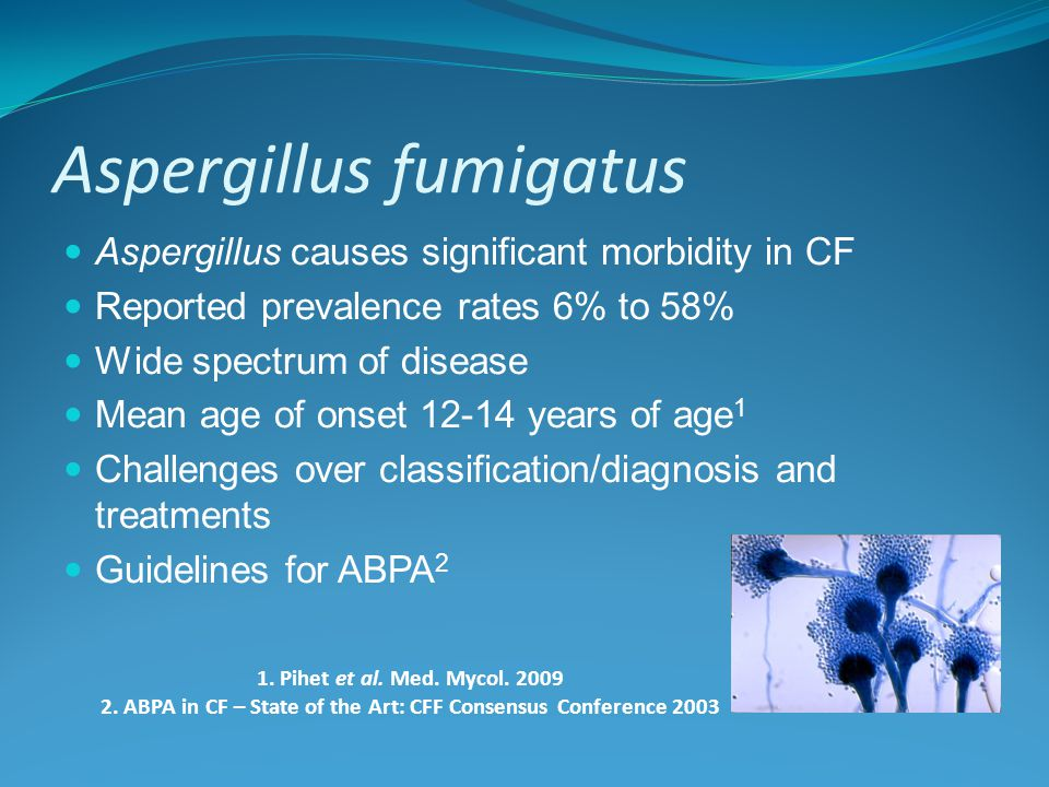 Aspergillus fumigatus Aspergillus causes significant morbidity in CF Reported prevalence rates 6% to 58% Wide spectrum of disease Mean age of onset 12-14 years of age 1 Challenges over classification/diagnosis and treatments Guidelines for ABPA 2 1.