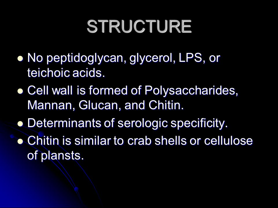STRUCTURE No peptidoglycan, glycerol, LPS, or teichoic acids.