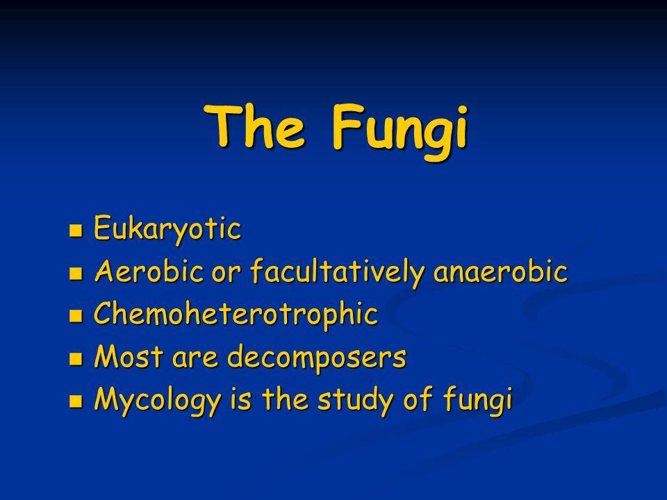 The Fungi Eukaryotic Eukaryotic Aerobic or facultatively anaerobic Aerobic or facultatively anaerobic Chemoheterotrophic Chemoheterotrophic Most are decomposers Most are decomposers Mycology is the study of fungi Mycology is the study of fungi