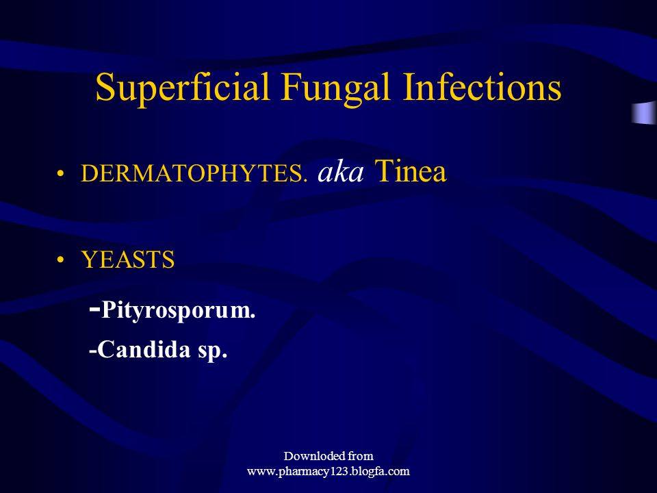 TINEA Infections T.Corporis- ringworm of body T.Cruris- groin T.Pedis- foot T.Unguium- nail T.Capitis scalp Downloded from www.pharmacy123.blogfa.com